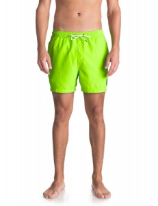 "Bañador Quiksilver Everyday 15"" - Green"