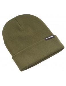 Gorro Dickies Alaska Beanie Hat - Verde