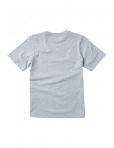 Camiseta Niño Fox Head Chromatic - Gris