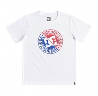 Camiseta Niño Dc Shoes Bright Roller - Blanco
