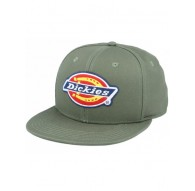 Gorra Dickies Muldoon - Verde